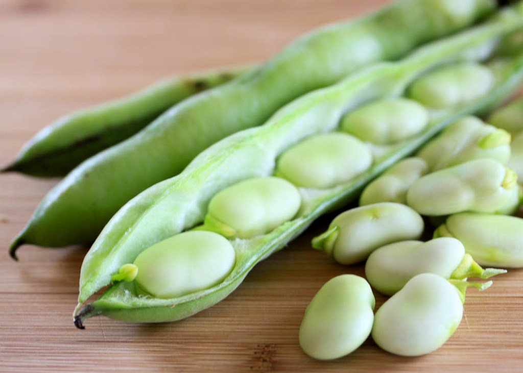 Photo of 5 Health Benefits Of Fava Beans